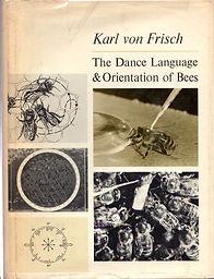 Dance of Bees.jpg