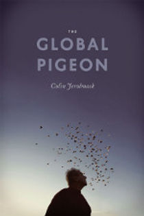 The Global Pigeon.jpeg