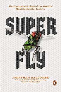 Super Fly.jpg