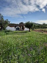 Farm_10000m