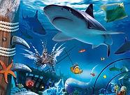 SEA-LIFE.jpg