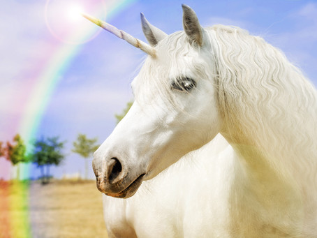 ICYMI: Four must-read healthcare stories from January - unicorn edition