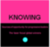 Knowing icon 01.png
