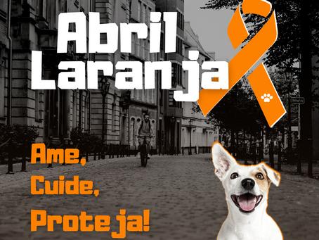 Abril Laranja: mês mundial de combate à crueldade aos animais!