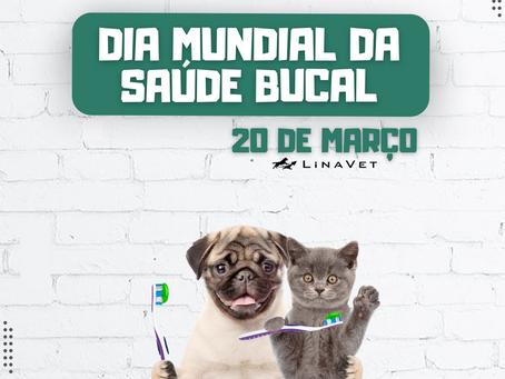 20/03 - Dia mundial da Saúde Bucal!
