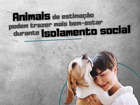 Animais de estimação podem trazer mais bem-estar durante isolamento social