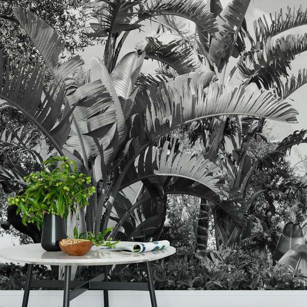 palmak-alatt-fotoposzter-nappali.jpg