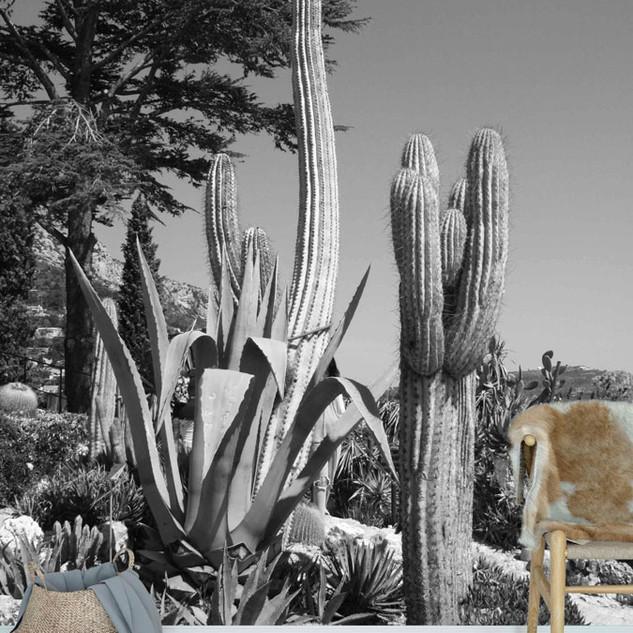 kaktusz-muveszi-poszter-fekete-feher.jpg