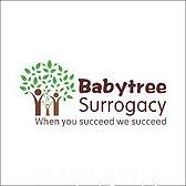 BabyTree Surrogacy logo.jpg