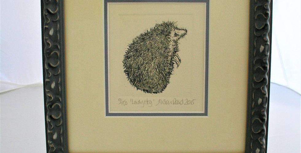 Alison Read -Ladyhog