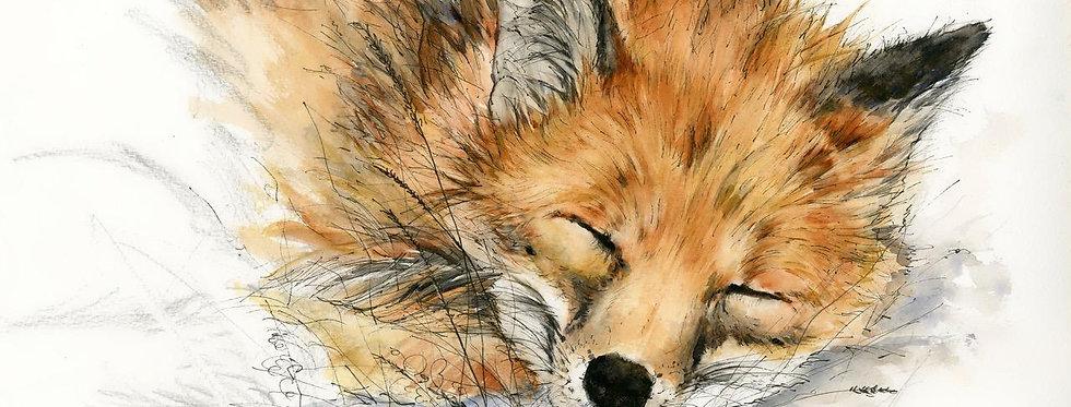 Anne Gilbert - Sleeping Fox