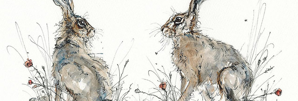 Anne Gilbert -Young Hares