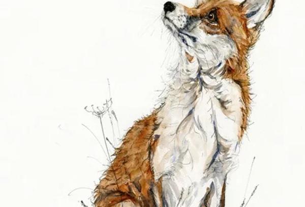 Anne Gilbert - Fox and Bee