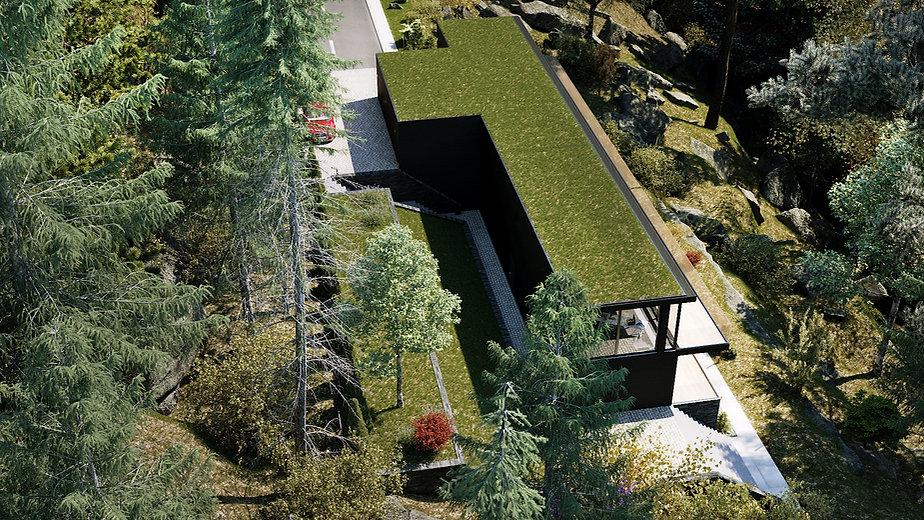 Une toiture verte peut avoir plusieur avantage en isolation thermique, ainsi qu'en récupération et filtration naturelle des eau de pluie. Sur cette image nous avons illustré une toiture respectueuse de sont environement. Le_bv_design s'engage à contribuer à un monde plus vert.