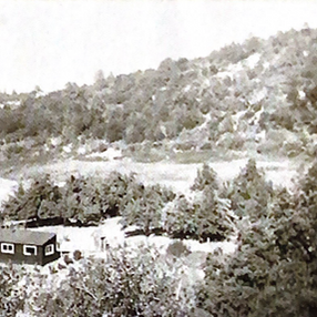 1890 / Cuyama Valley