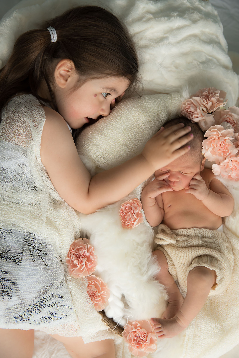 newborn love joanne schwindt photography