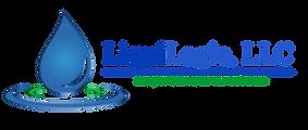 LiquiLogic LLC Logo.png