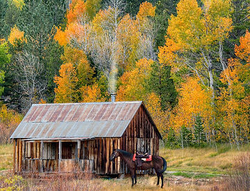 Hope Valley cabin with horse.jpg