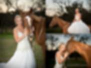 wedding horse.png