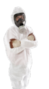mold asbestos removal professional