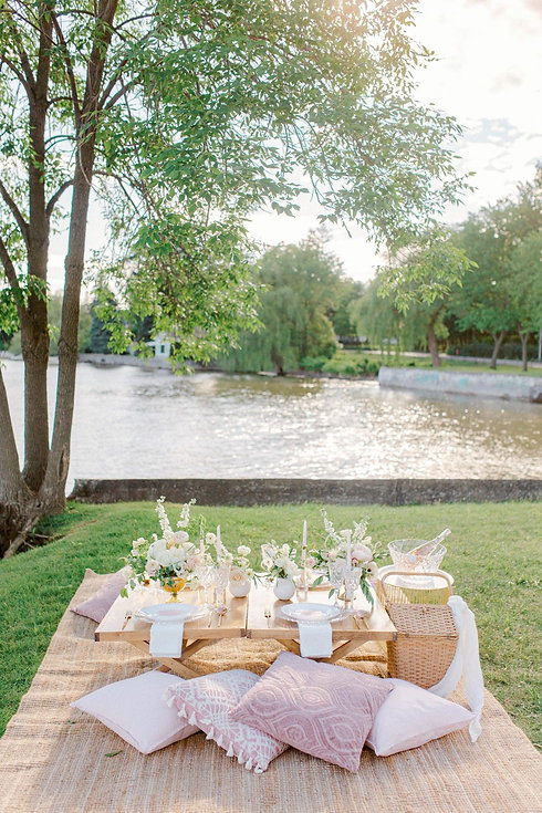 Pretty in Pink Chic Picnic Elopement Ide