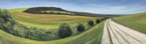 Long Way Ahead by Janice Thurston