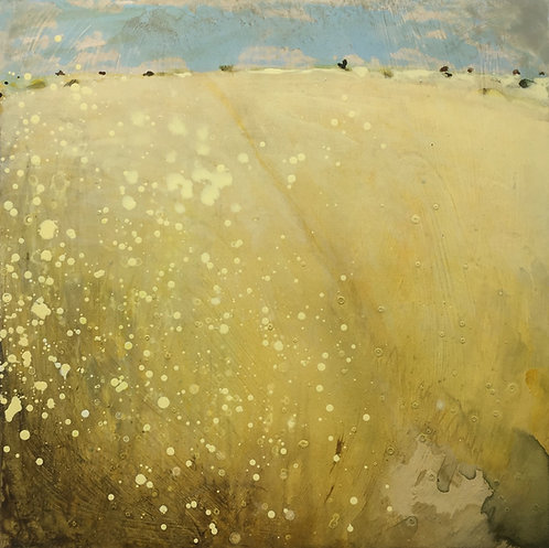 Sun Baked Fields by Nichola Campbell