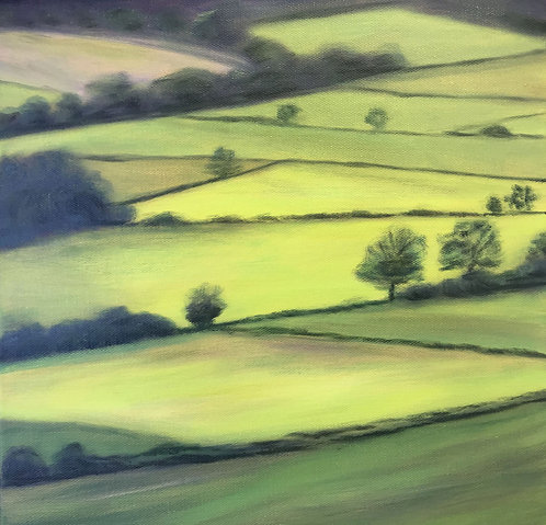 Patchwork of Fields by Janice Thurston