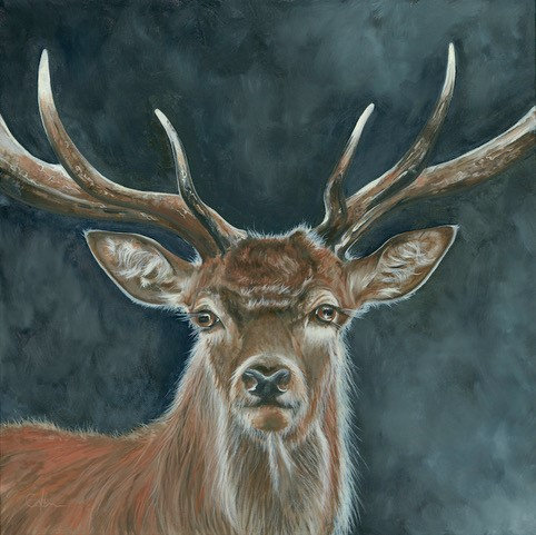 Giclee Print of Stag Alert by Nicola Colbran