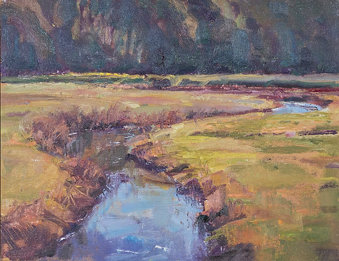 Cranberry Bogs October Light by Frances Knight