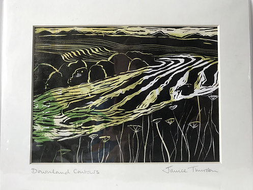 Downland  Contours by Janice Thurston