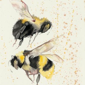The pollenators.jpeg
