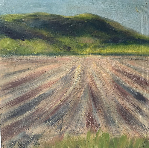Downland Mini Distant Hills by Janice Thurston