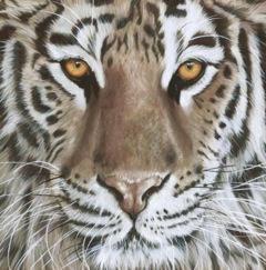 Taupe Tiger.jpeg