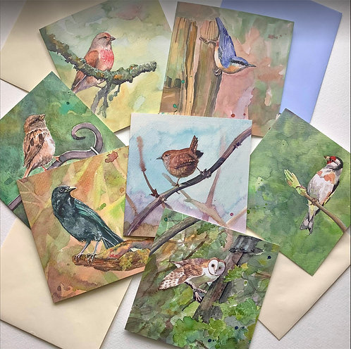 Bird Cards (Pack1) by Lyndsey Smith