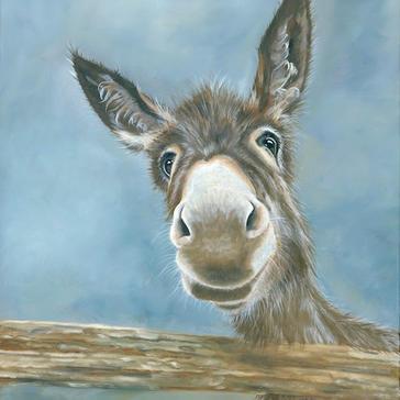 donkey dear-1 copy.jpg