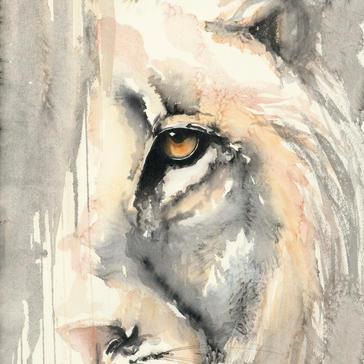 Hiding Lion .jpeg