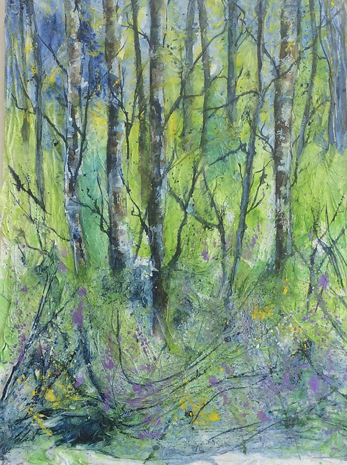 Bluebell Woods by Lindsey Pearson