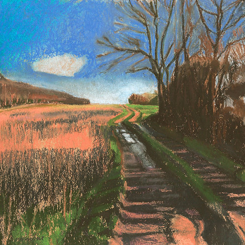 Shadow Path South Downs Way by Andrew Milne
