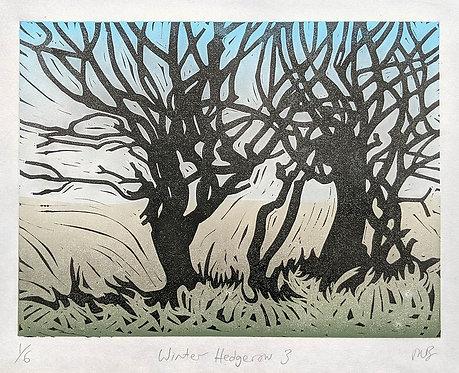 Winter Hedgerow 3  by Melissa Birch