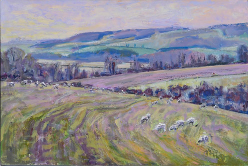 Sheep on the Downs Winter Quietude by Frances Knight