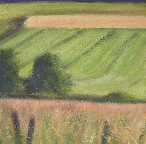 Downland Mini Sloping Fields by Janice Thurston