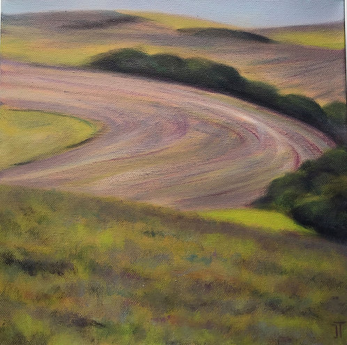 Sweeping Fields by Janice Thurston