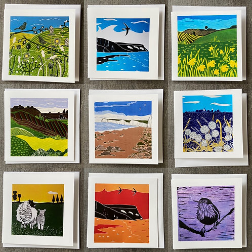 Pack of 9 Greetings cards (Mixed pack D) by Sue Collins