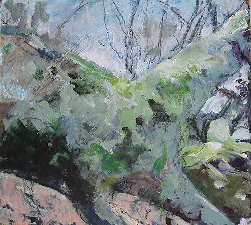 Fallen Tree by Gabrielle Lord