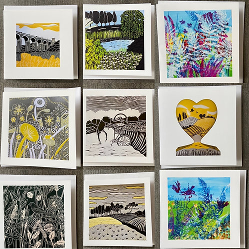 Pack of 9 Greetings cards (Mixed pack B) by Sue Collins