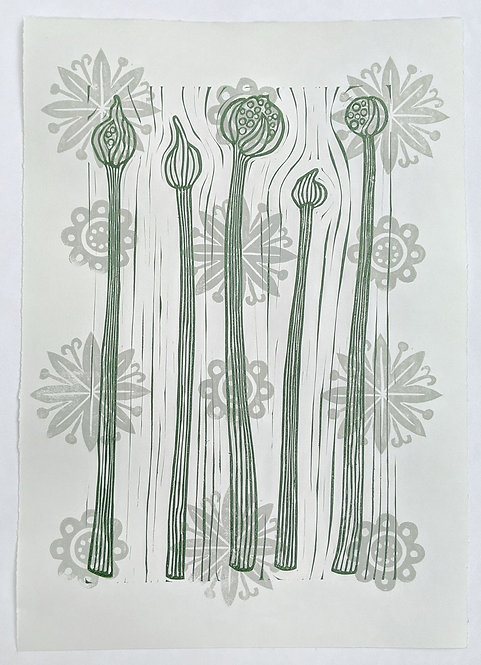 Onions Bolting by Melissa Birch