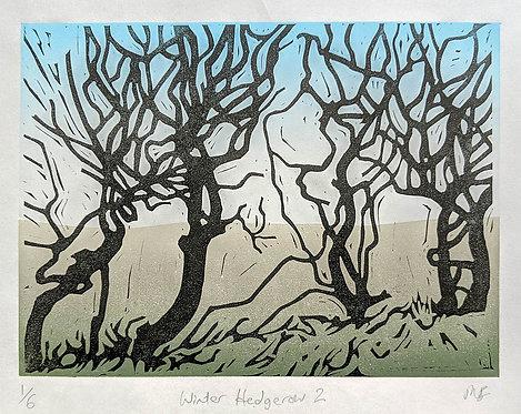 Winter Hedgerow 2 by Melissa Birch