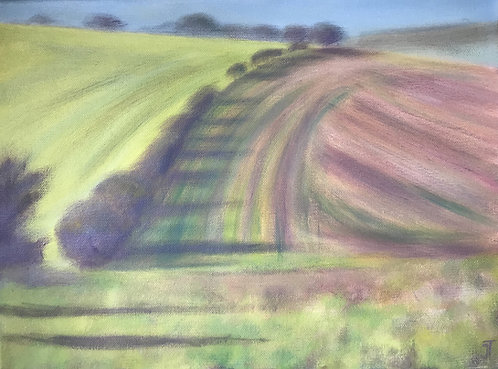 South Downs, green fields, long shadows, Sussex countryside