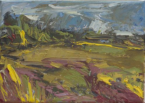 Field 1 by Eva Wibberley